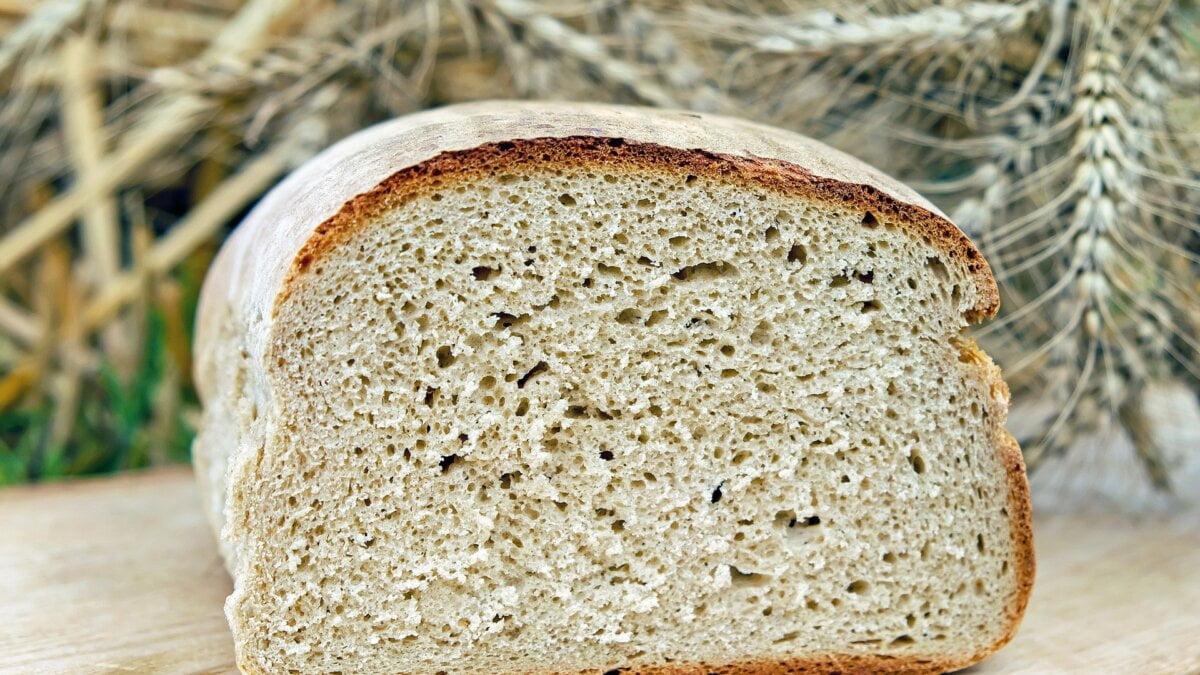 Snadný cuketový chlebíček z konopné mouky