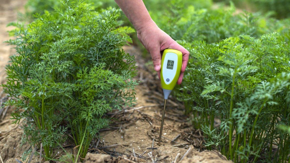 Kontrola pH půdy