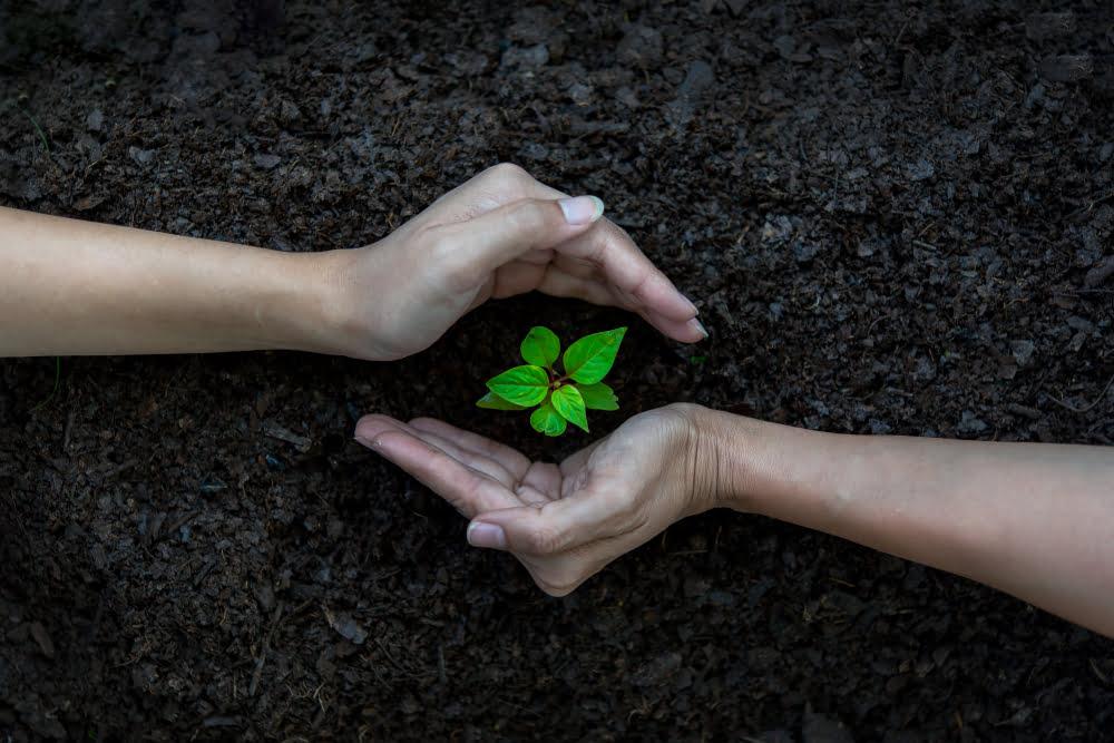 Měsíc v ekologii – leden 2021