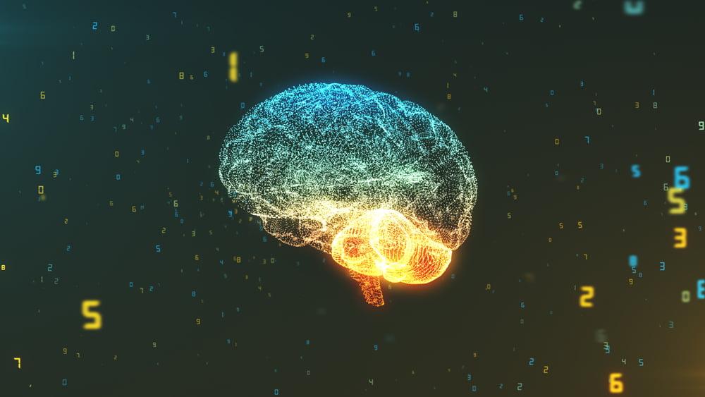 Jak poznat inteligentní lidi – patříte mezi ně?